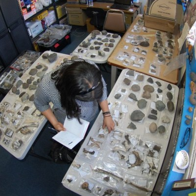 México recupera 523 piezas arqueológicas provenientes de Estados Unidos