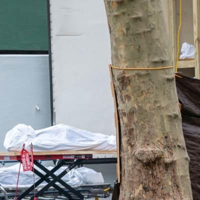 Cuerpos de víctimas COVID en Nueva York son guardados en camiones refrigerados desde hace un año