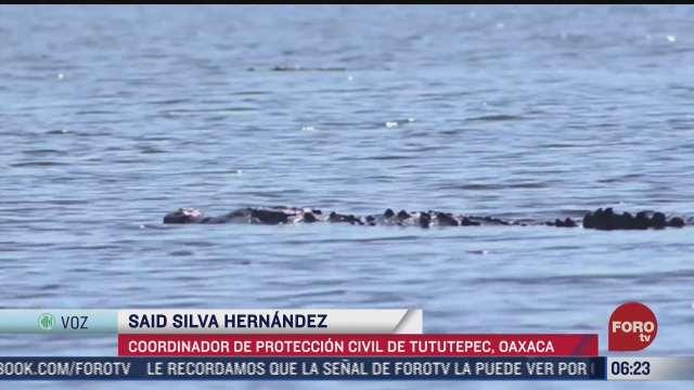cocodrilo ataca a dos turistas britanicas en oaxaca