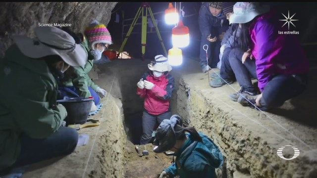 cueva de denisova hogar de tres hominidos