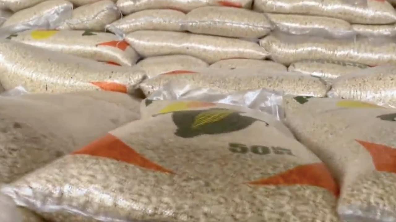 Miles de toneladas de maíz, propiedad de Segalmex, se pudren en Chiapas y lo comercializan en Guatemala