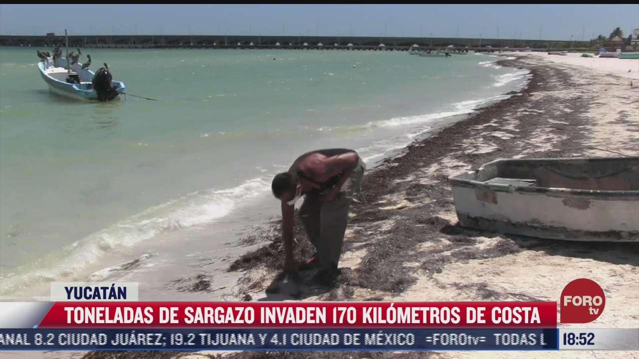 pescadores limpian sargazo para evitar que lanchas se hundan