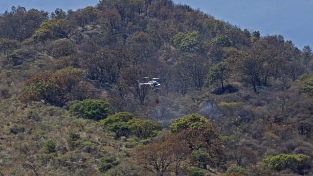 Predios del Bosque de la Primavera son retirados de la subasta del Gobierno federal