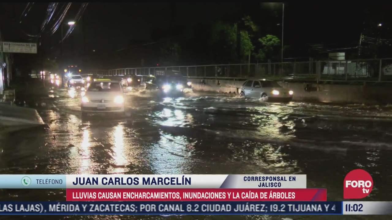 lluvias causan encharcamientos inundaciones y caida de arboles en jalisco