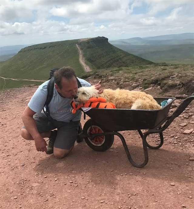 Perrito con cáncer da un último paseo en su montaña favorita