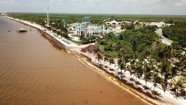 Fotografía que muestra Playa Coral y Playa Ballenas Fe con miles de toneladas de sargazo flotando en el mar