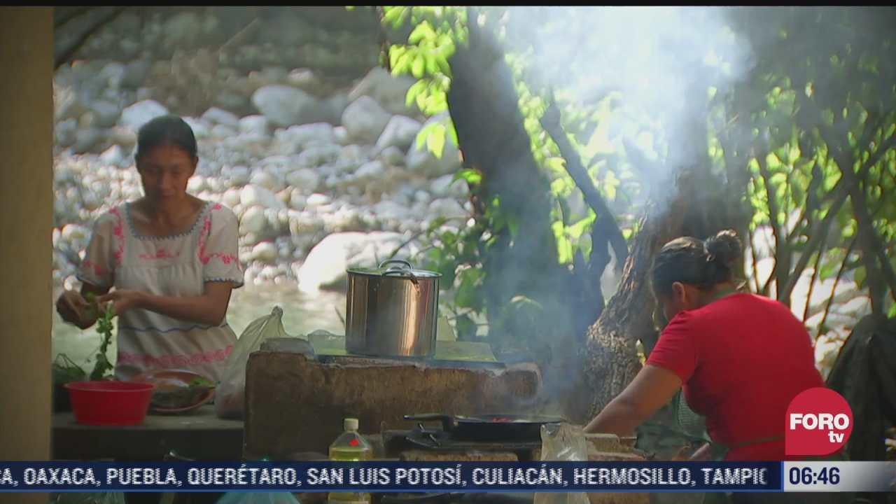 cocineras de colima forman colectivo para recordar sus origenes y raices culinarias
