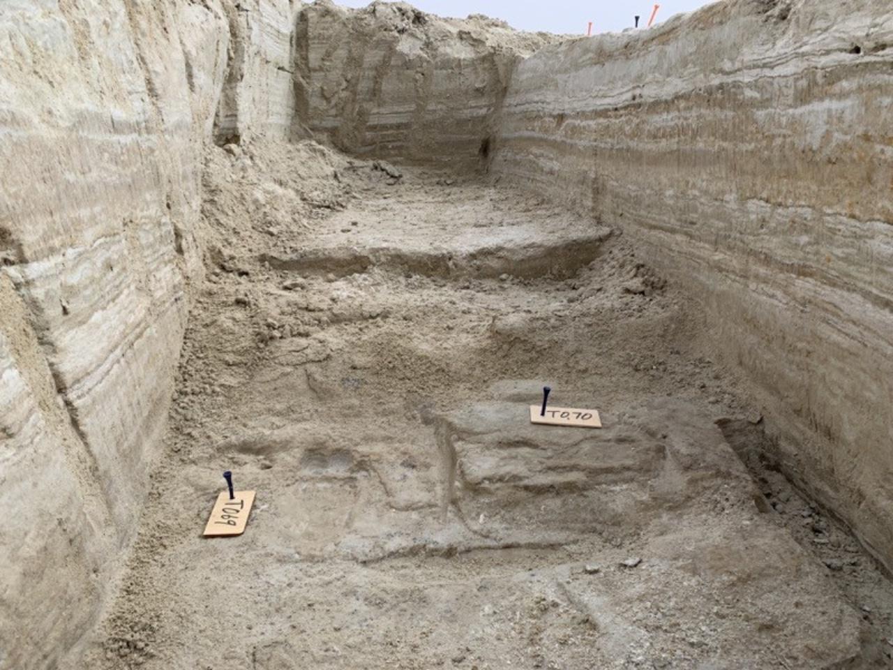 Ser humano en América: descubren huellas de hace 23 mil años