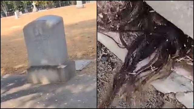 Hombre encuentra cabello humano saliendo de una tumba en Estados Unidos