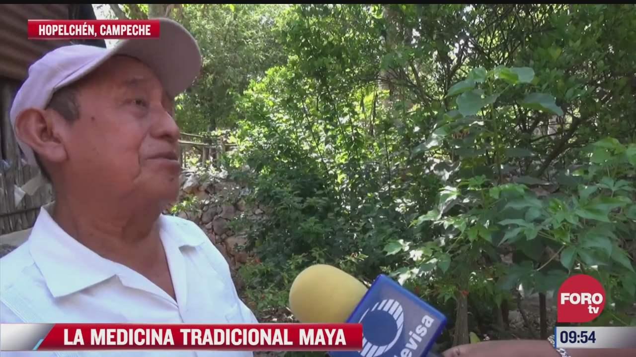 la medicina tradicional maya