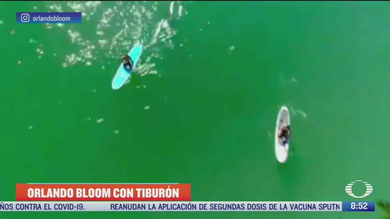 orlando bloom practica paddleboarding entre tiburones