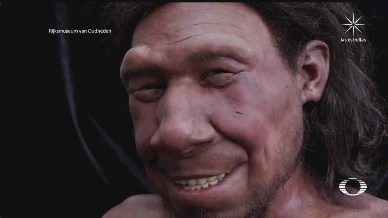 reconstruyen un neandertal hiperrealista