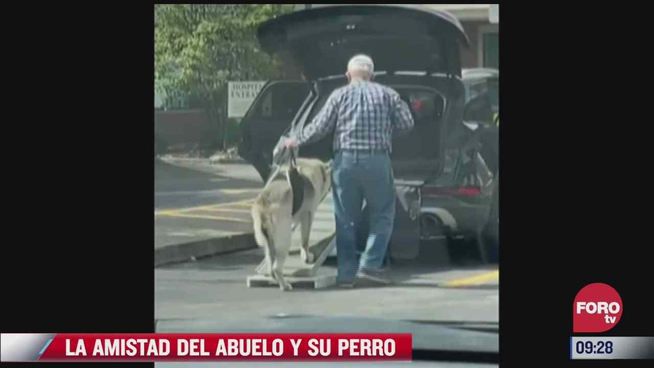 video la amistad entre un abuelito y su fiel perro
