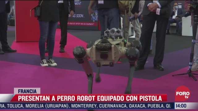 presentan perro robot en francia