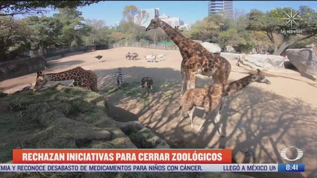 rechazan iniciativas para cerrar zoologicos en mexico