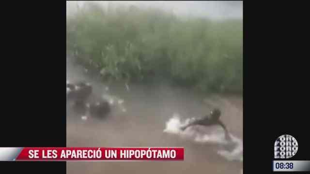 video hipopotamo aparece mientras ninos jugaban en el agua
