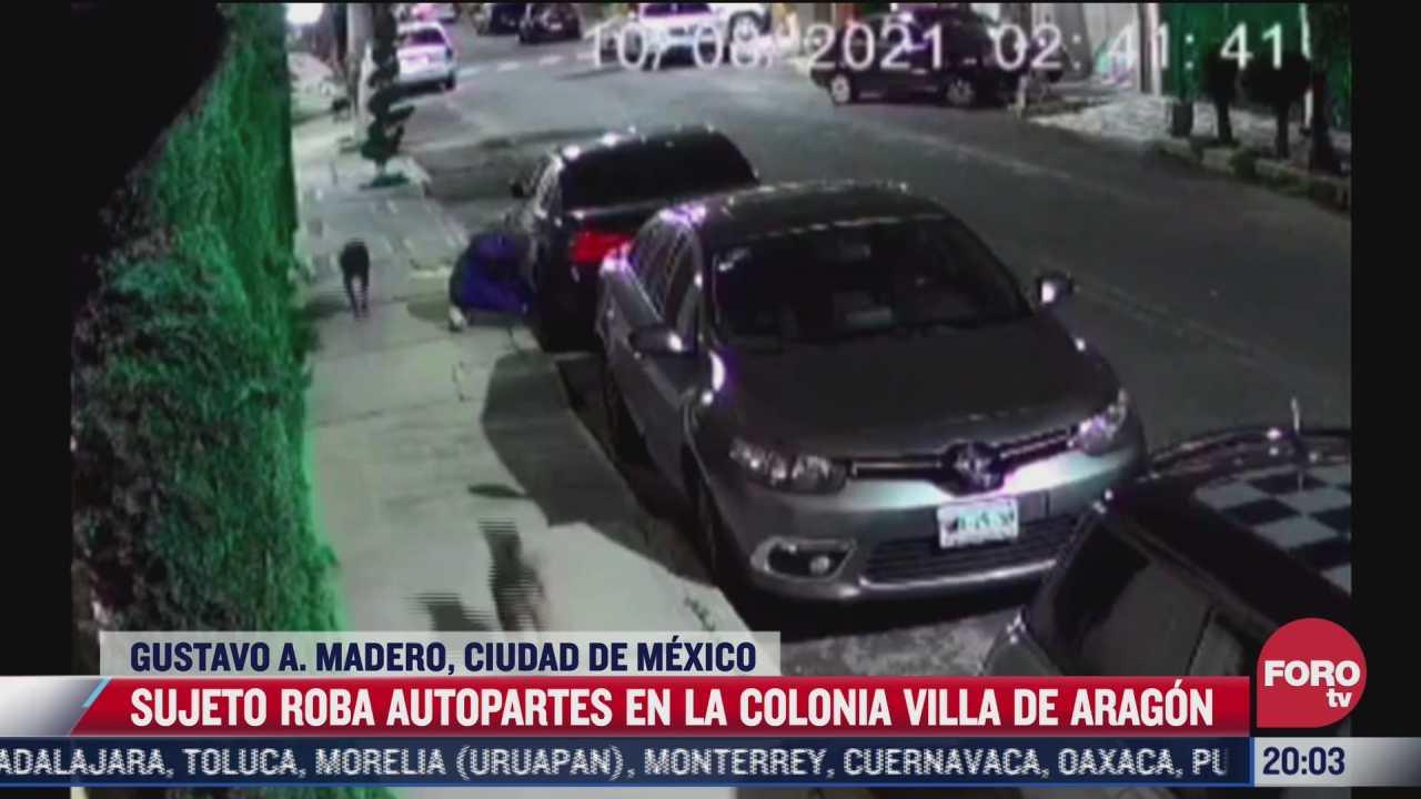 video hombre acompanado de dos perros roba autopartes en la gam