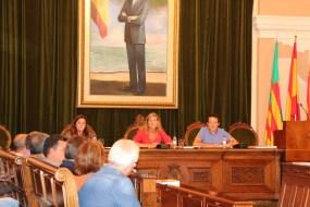 Constitución consejo participación ciudadana