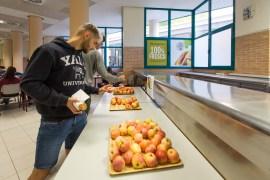 uji dia universitats saludables