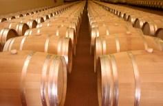 ajudes per al sector vitivinicola