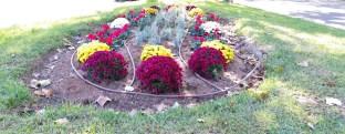 dispositiu jardineria valencia