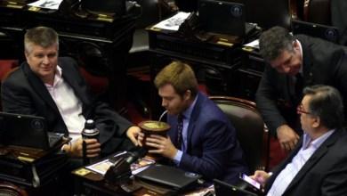 Photo of Cómo quedaría el Congreso si se repiten los resultados de las PASO en octubre