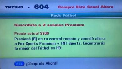 Photo of El fútbol de verano será codificado: ¿Qué motivos dieron Fox y Turner?