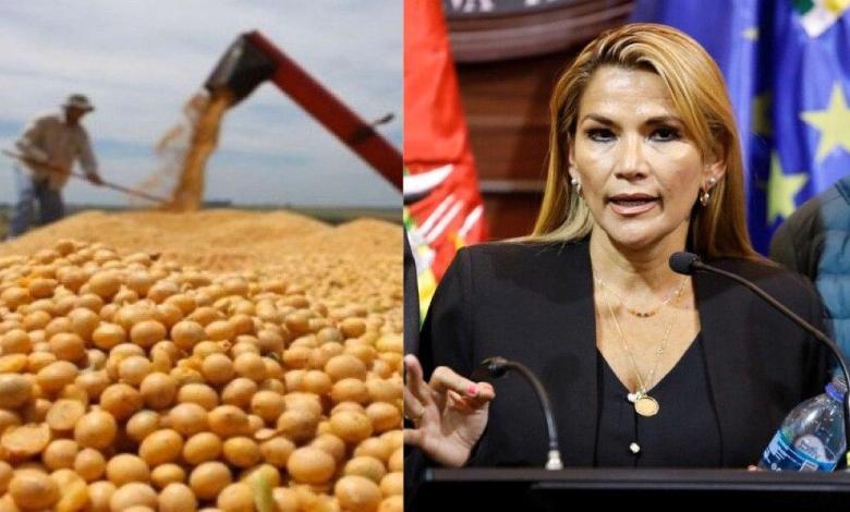 Photo of Jeanine Áñez y empresarios acuerdan liberar exportaciones sin necesidad de abastecer el mercado local