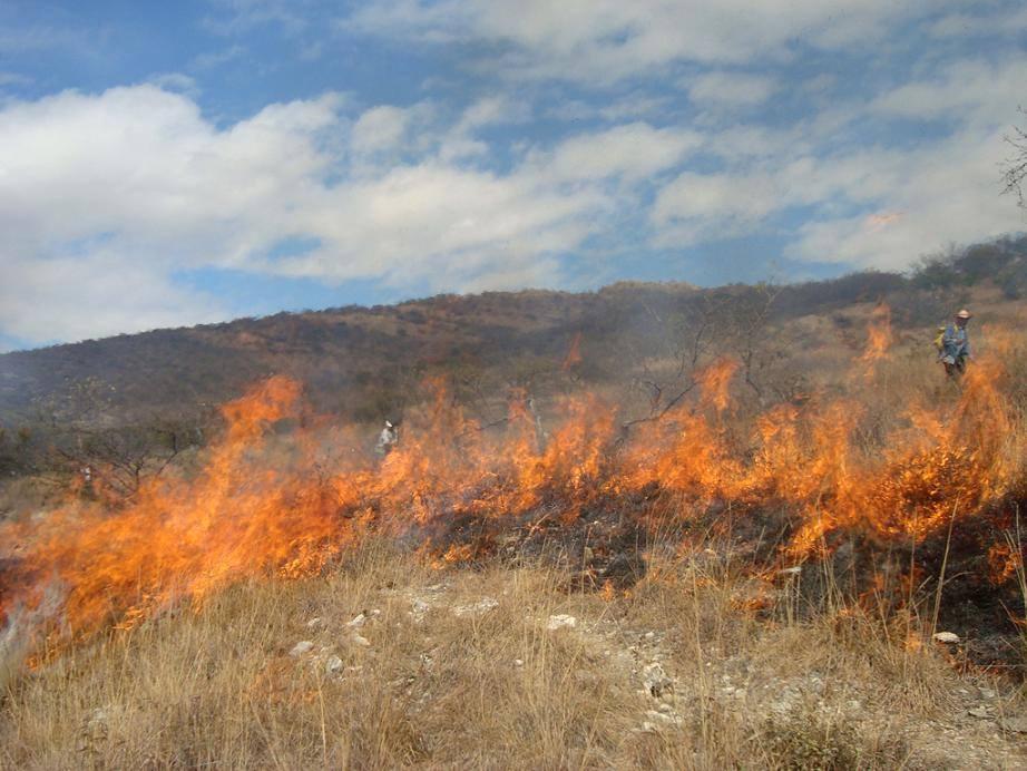Dos fuertes quemas se registran en carretera León-Poneloya