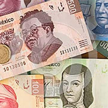 Necesaria la coordinación de los sectores públicos y privados para impulsar a los proyectos productivos de Chiapas