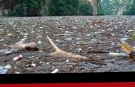 En temporada de lluvia incrementa la basura en El Grijalva
