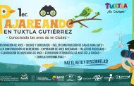 """Invita Ayuntamiento de Tuxtla Gutiérrez a conocer las aves de la ciudad a través del primer """"Pajareando"""