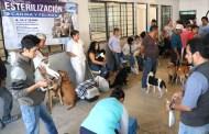 Secretaría de Salud culmina campaña de esterilización canina y felina en Tuxtla