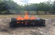 Incineran Narcóticos en Tapachula