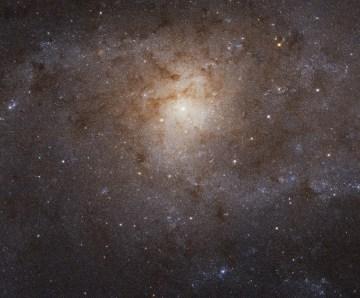 NASA ofrece viaje virtual al centro de la Vía Láctea