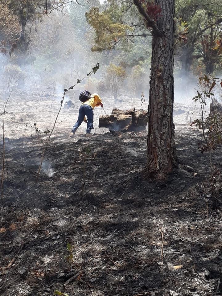 Más de 2 mil hectáreas afectadas por incendios