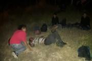 Vuelca tráiler con migrantes en Veracruz con saldo de 19 heridos