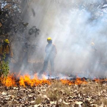 Hasta el momento se registra 113 incendios en Áreas Naturales Protegidas