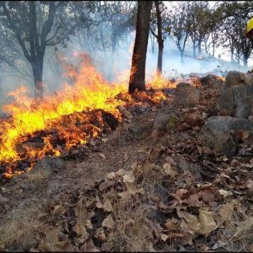 Ahora en municipios de Jalisco activan alerta atmosférica