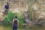 Atrapan a cocodrilo de 3 metros en Oaxaca
