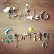 Hello Spring [via http://www.studiosjoesjoe.com/2013/04/hello-spring.html]