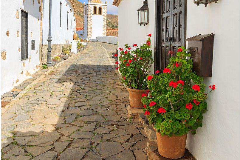 Calles llenas de flores y encantos