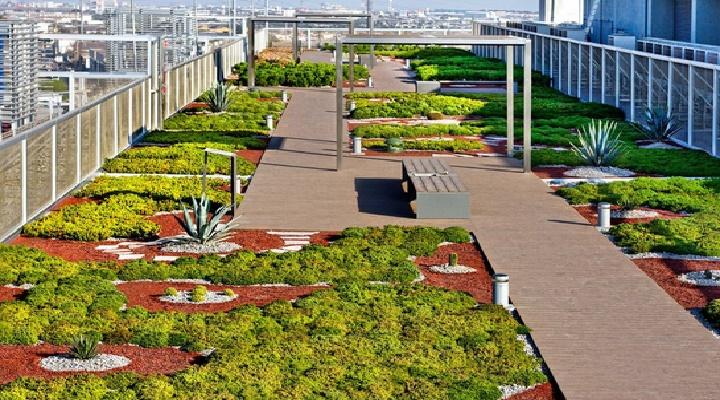 edificios contechos verdes consumen menos energia