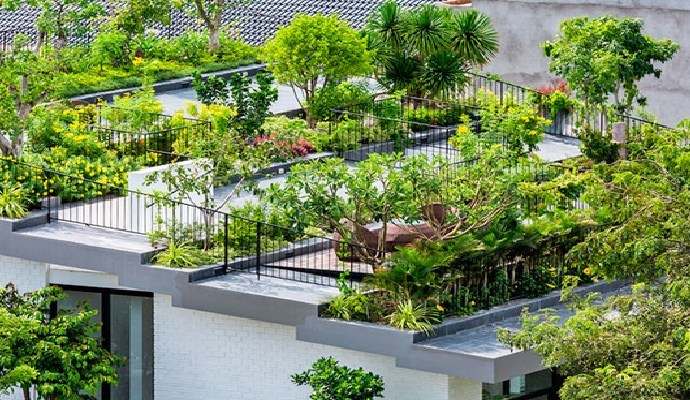 edificios con techos verdes, más eficiencia energética