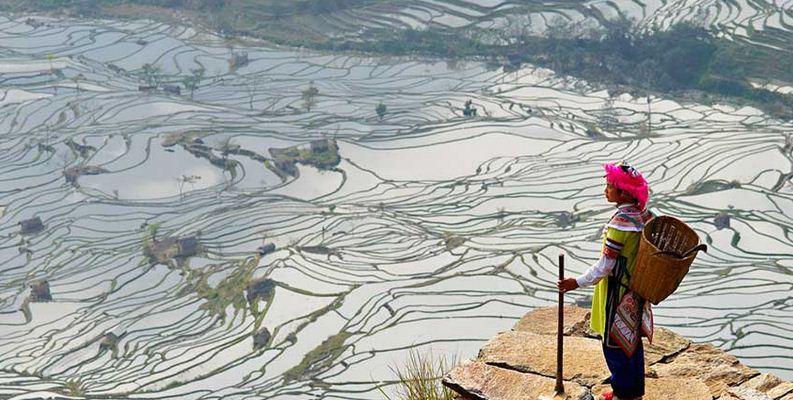 Terrazas de YuangYang