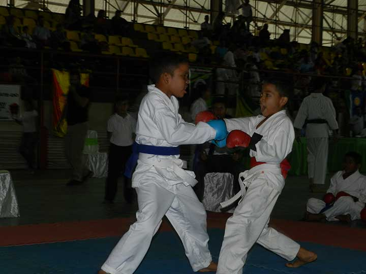 Competencia de kumite en la I Copa Tamashi en La Pascua (1)