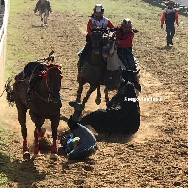 La super campeona nacional Diana Carolina Maluenga ejecutó coleada y sufrió caída en la Campeones Guariqueños cortesía Eli Saúl Segovia.