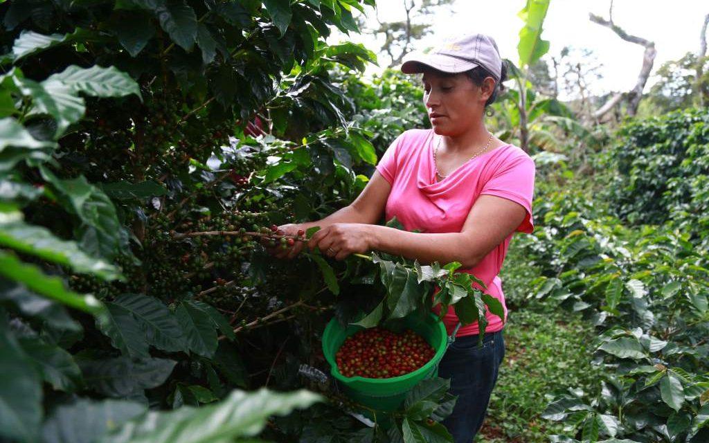 El SENA apoya a las mujeres del campo y conmemora del Día Internacional de la Mujer Rural