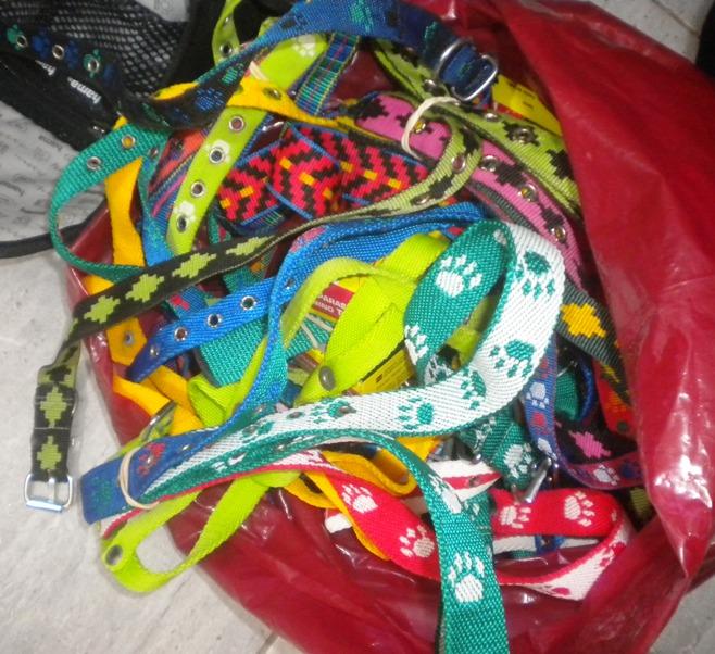 Los collares para las mascotas, recibidos en donación