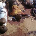 190111_Corpses_in_in_Damaturu_Yobe_state_June_2013.